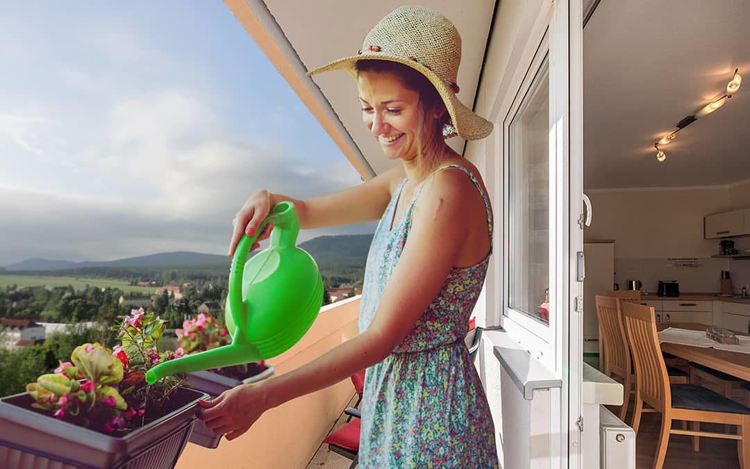 Das große Blühen für den eigenen Balkon